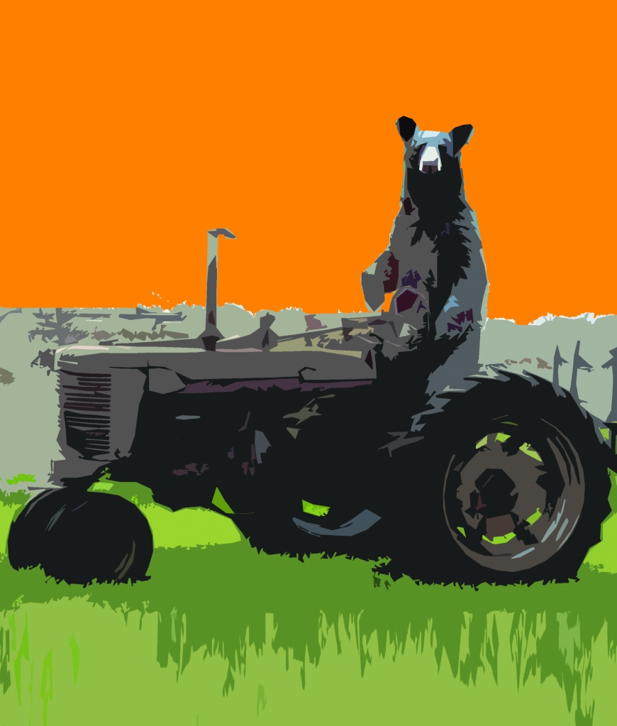Bear on Tractor